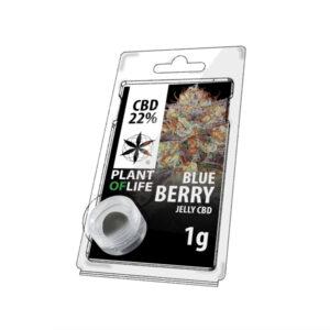 CBD jelly 22% blueberry 1g