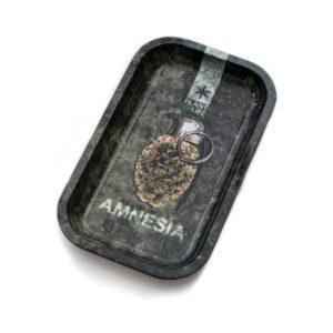 Amnesia Podlaga
